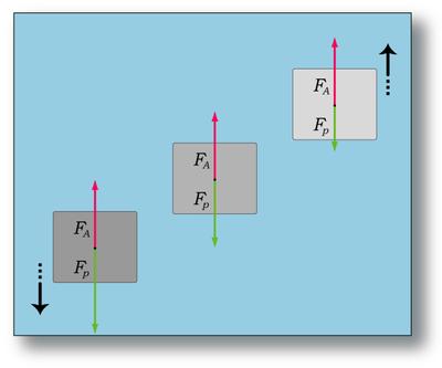 Principio di Archimede spinta e peso.png