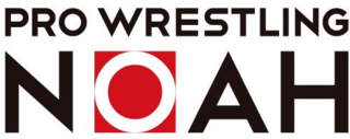 Pro Wrestling Noah Japanese professional wrestling promotion
