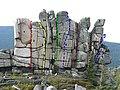 Ptasie skały - drogy wspinaczkove.jpg