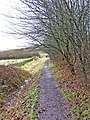 Public footpath to River Severn from Blackstone Rock Car Park - geograph.org.uk - 659121.jpg