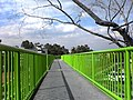 Puente sobre Periferico Ote. - panoramio.jpg