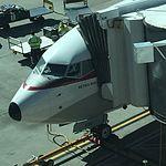 Qantas 737-800 VH-VXQ at SYD (30091154963).jpg