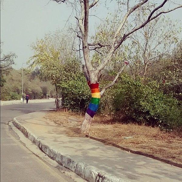 File:Queer tree in JNU.jpg