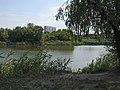 RBG pond fisher.jpg