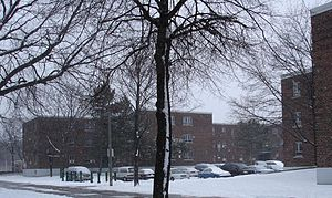 Regent Park - Regent Park in winter.