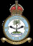 Raf-95-badge.png