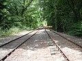 Railway sidings at Botley station - geograph.org.uk - 945533.jpg