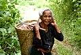 Rajasthali, Bangladesh (6312184157).jpg
