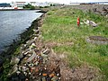 Recently reclaimed land, Belfast docks - geograph.org.uk - 842867.jpg