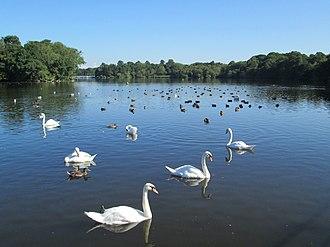 Siddington, Cheshire - Redesmere