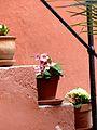 Regensburg Haus Heuport.jpg