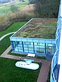 Rehaklinik Ahrenshoop - panoramio.jpg