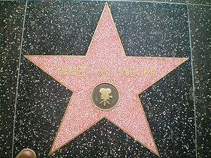 Renée Zellweger - Zellweger's star on the Hollywood Walk of Fame