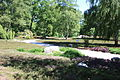 Rhododendronpark Bremen 20090513 023.JPG