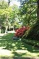 Rhododendronpark Bremen 20090513 059.JPG