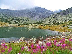 Rila mountain. Down Musala Lake..JPG
