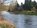 River Avon at Fittleton - geograph.org.uk - 363273.jpg