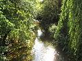 River Beane in Stapleford - geograph.org.uk - 1525871.jpg