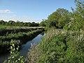 River Cam - geograph.org.uk - 1309901.jpg