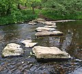 River Don stepping stones - geograph.org.uk - 816087.jpg