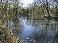 River Kennet near between Woolhampton and Aldermaston - geograph.org.uk - 332984.jpg