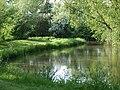 River Loddon - geograph.org.uk - 175427.jpg