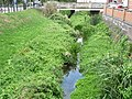 River Welland in Market Harborough 01.jpg
