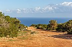Road in Akamas Peninsula, Cyprus 06.jpg
