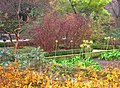 Royal Botanical Garden, Madrid - view 12.JPG
