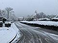 Rue des Muriers (Saint-Maurice-de-Beynost) le 2019-01-23 (neige).jpg