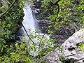Ruizi Creek 蚋仔溪 - panoramio (2).jpg