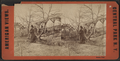 Rustic rest, from Robert N. Dennis collection of stereoscopic views 2.png