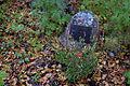 Sørfjordens første kirkegård 01.jpg