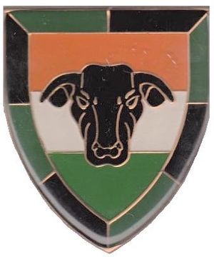 14 South African Infantry Battalion - SANDF 14 SAI emblem