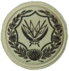 SANDF Badge for Reserve Voluntary Service BRVS embossed.png