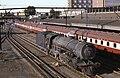 SAR Class 12AR 1542 Kimberley 270383.jpg