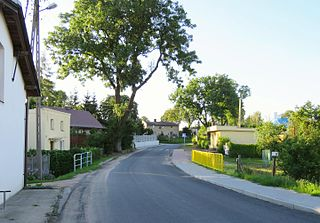 Szczepanki, Brodnica County Village in Kuyavian-Pomeranian Voivodeship, Poland