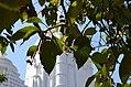 Sabara Srikhetra 12.jpg