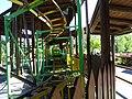 Safari Park (34404816281).jpg