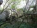 Saint-Front-la-Rivière ruines la Renaudie (18).JPG
