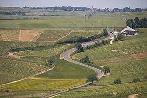 Vineyards in the French wine region of Sancerr...