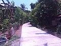 Santa Maria and Bocaue area - panoramio (3).jpg