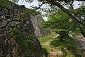 Sasayama Castle16n4592.jpg
