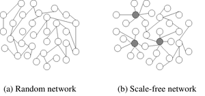 Scale-free network - Random network (a) and scale-free network (b). In the scale-free network, the larger hubs are highlighted.
