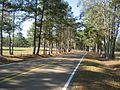 Scenic stretch of Highway 598 in Sanford, Mississippi.jpg
