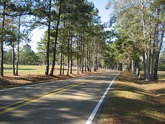 Sanford, Mississippi - A scenic stretch of Highway 598 in Sanford