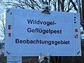 Schild Wildvogel--Geflügelpest Beobachtungsgebiet an der Glücksburger Bahnhofsstraße, beim Ortsschild, Richtung Rüdeheck (2017).jpg