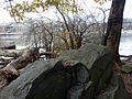Schist outcropping at TR island.JPG