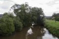 Schlitz Hartershausen Fulda Salix.png