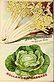 Seed annual, 1899 (16417405846).jpg